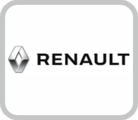 elementos de seguridad personal para RENAULT