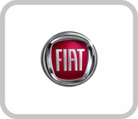elementos de seguridad personal para FCA